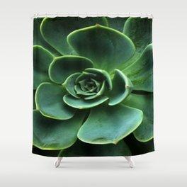 GRAY-GREEN CACTUS SUCCULENT ART Shower Curtain
