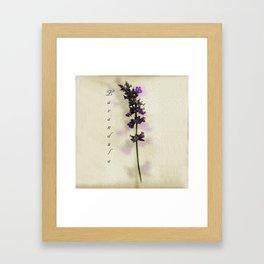 Purple Lavender Framed Art Print