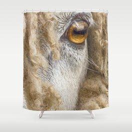 Sheep 2 Shower Curtain