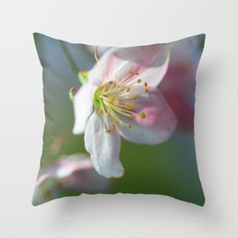 Apple Tree Blossoms In Spring Throw Pillow