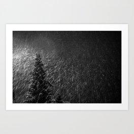o tannenbaum Art Print