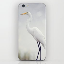 Great Egret perched in Florida wetlands iPhone Skin