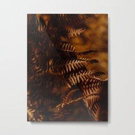 Autumn Fern Tree Leaf Brown Coffee Color Metal Print