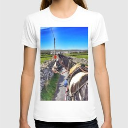 Carriage with a Tinker Pony T-shirt