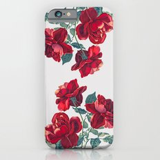 Red Roses Slim Case iPhone 6