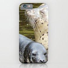 Harbor Seal Sweetness iPhone 6s Slim Case