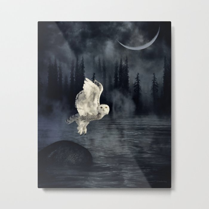 The owl and her mystical moon Metal Print