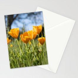 A Vibrant Gathering  Stationery Cards