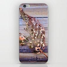 Beautiful Decay iPhone & iPod Skin