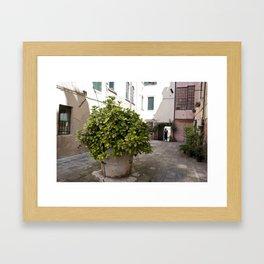 Inne yard Framed Art Print