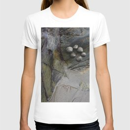 Collection of Limpets on Coastal Rocks T-shirt