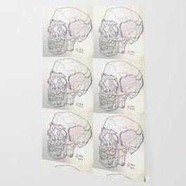 Skull drawing Wallpaper