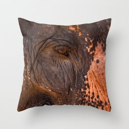 Gentle and Wise Throw Pillow