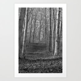 Path To No Where Art Print