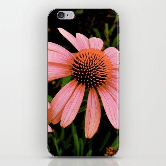 Flowers 4 iPhone & iPod Skin