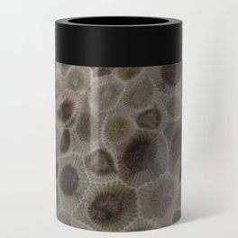 Petoskey Stone Can Cooler