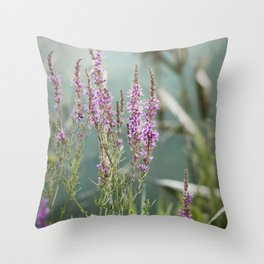 Lakeside Colors Throw Pillow