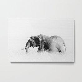 Elephant High Key Metal Print