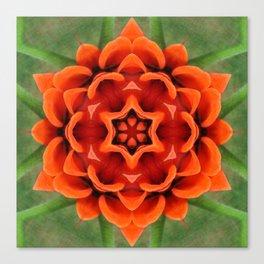 Booming Bloom Print Canvas Print