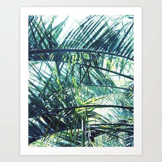 Bright Palm 3 Art Print