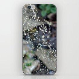 Catch the Light iPhone Skin