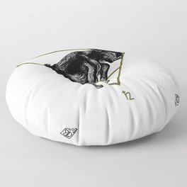 Alazne II Floor Pillow