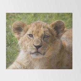 Baby Lion Cub Throw Blanket