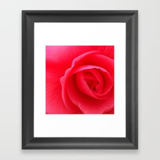 FLOWER 027 Framed Art Print