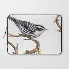 Black-and-White Warbler (Mniotilta varia) Laptop Sleeve