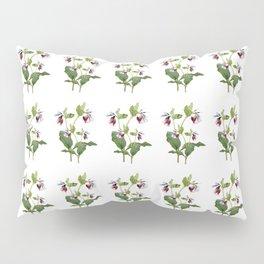 Comfrey Pillow Sham