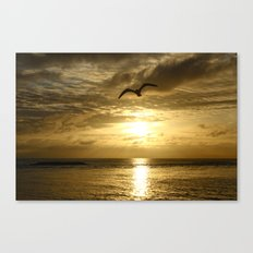 Flying over gold Canvas Print