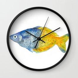 Blue and yellow fish Wall Clock