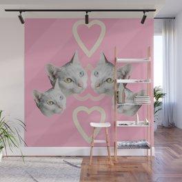 Cat Pink Trip Wall Mural
