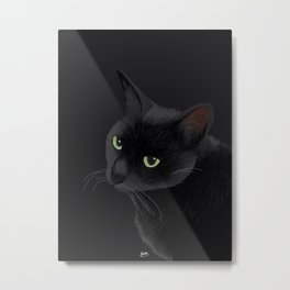 Black cat in the dark Metal Print