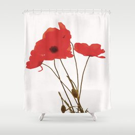 Delicate Red Poppies Vector Style Shower Curtain