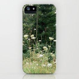 Wildflowers 1 iPhone Case