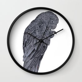 Nibbling Black Cockatoo Wall Clock