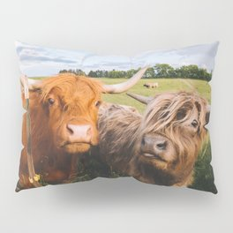 Highland Cows - Blep Pillow Sham