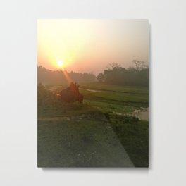 Elephant at Sunrise Metal Print