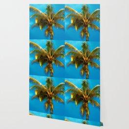 Sunlight Strikes the Coconut Palm Wallpaper