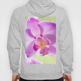 Backlit Iris Hoody