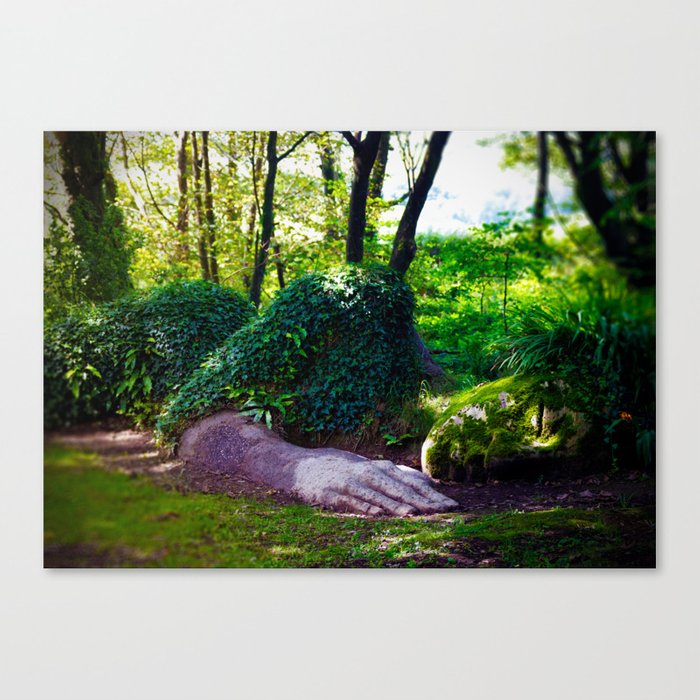 Heligan giant Canvas Print