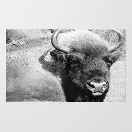 Bison - B/W Rug