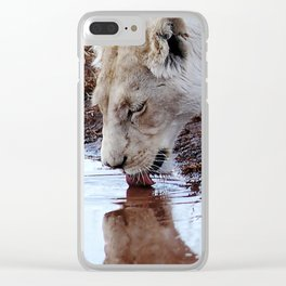 White lion drinking rain water Clear iPhone Case