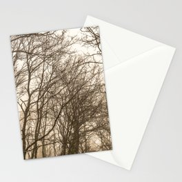 The mist in the forest Stationery Cards