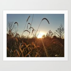 Autumn Fields 1 Art Print