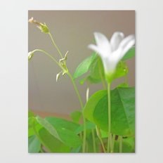 happy easter > () < () > ()< () > Canvas Print