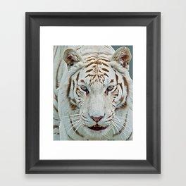 TIGER TIGER 2 Framed Art Print