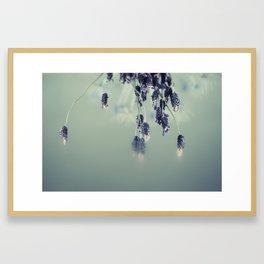 LAVANDA Framed Art Print