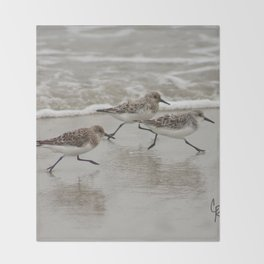 Sandpipers Throw Blanket
